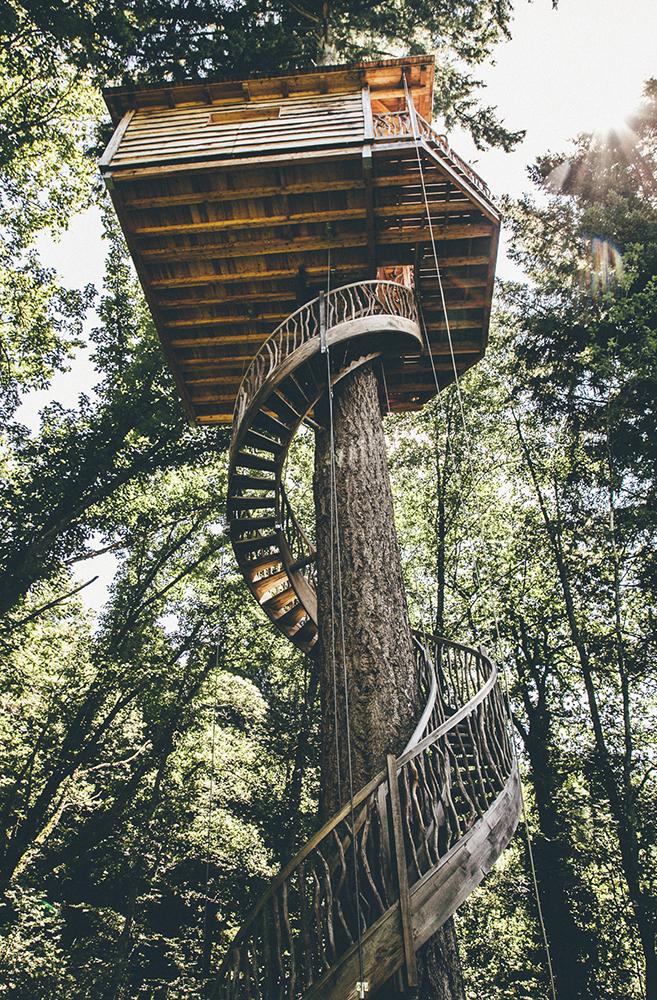 Cabanes als arbres - Cabana txantxangorria ...